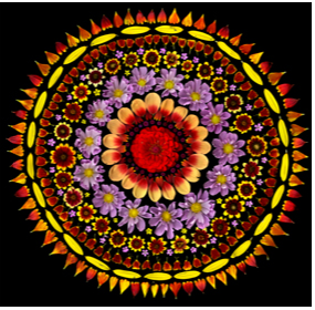 Portia Munson. Cosmos Sun, 2011.