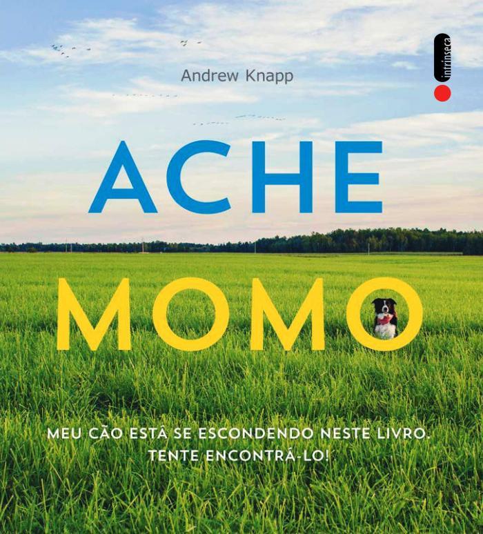 ache momo-001