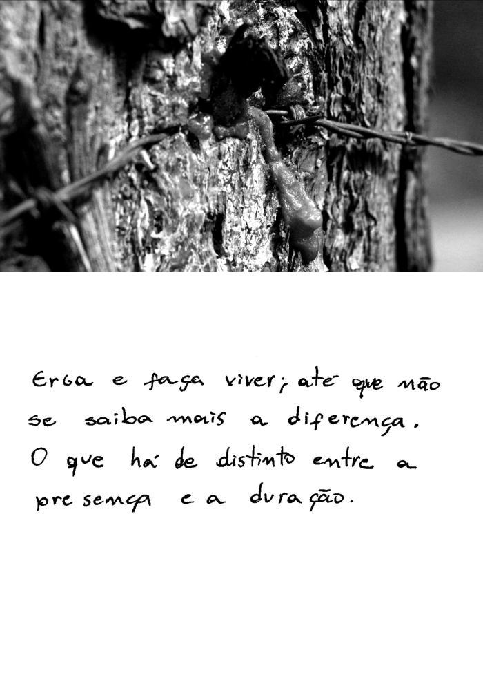 ENS 03