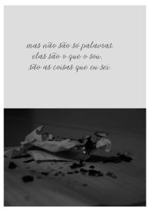 Cecilia - obra Só também é poesia2-016