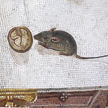 Mosaico. Rato. Ensaio. Roma.
