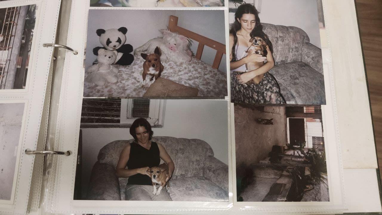Imagem de capa. Crônica. Álmbum de família. Chihuahua.